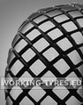 Gomme Giardinaggio - Bridgestone FD Set 6-14 4PR TT